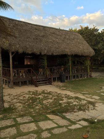 Hotel Oasis: Beach bar