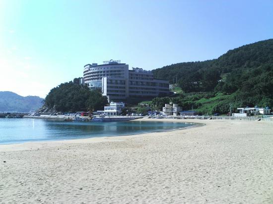 Hotel C Palace