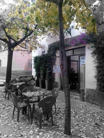 Bar Cooperativa Elena