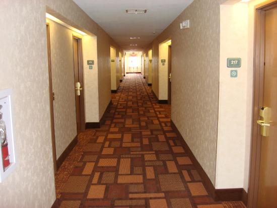Best Western Club House Inn & Suites Picture