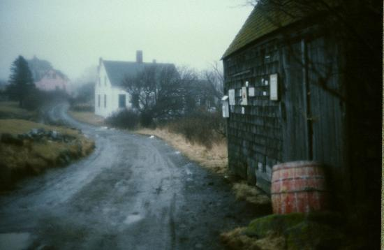 Gull Cove Picture Of Tribler Cottage Monhegan Island