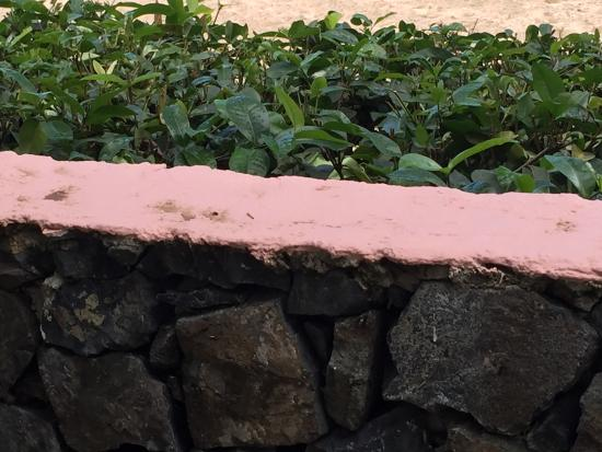 Secret Harbour Beach Resort: Why paint the stone wall?