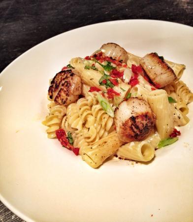 Agora Mediterranean Kitchen: Lightly sauced pasta w/scallops.
