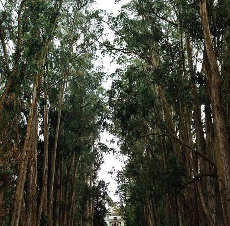 Hacienda La Cienega: Entrance.