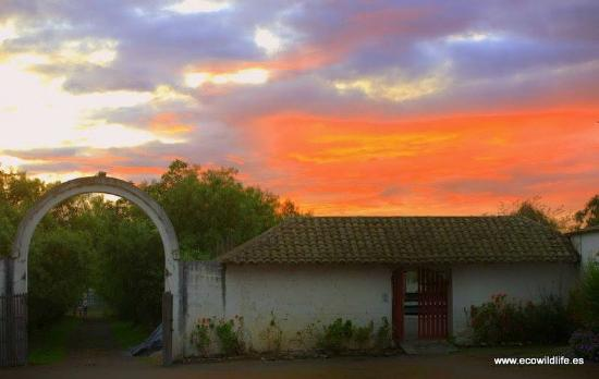 Hacienda La Cienega: Sunset.