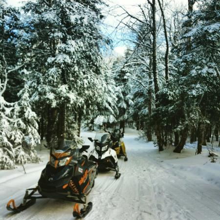 ‪Northern Extremes Snowmobiling - Tours‬