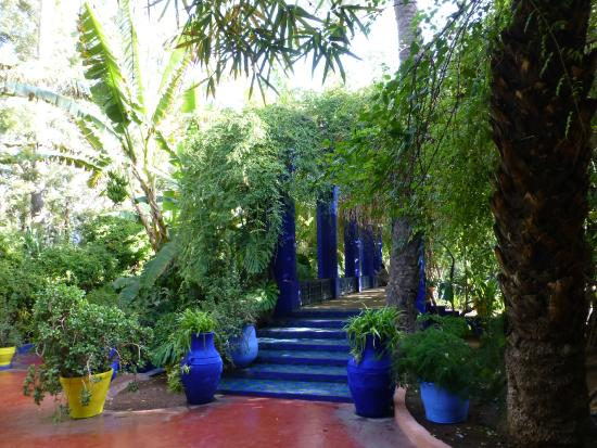 M morial yves saint laurent picture of jardin majorelle for Jardin majorelle