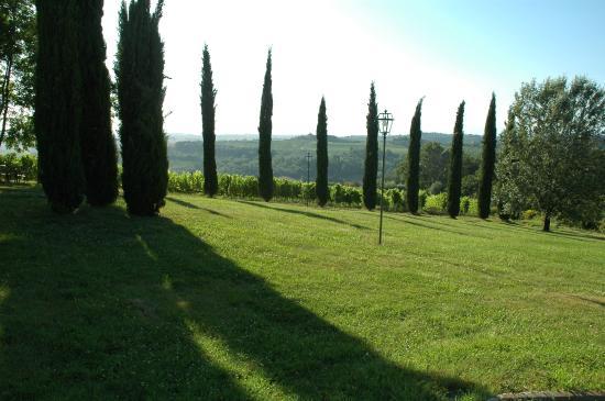 Tenuta Moriano: giardino panoramico