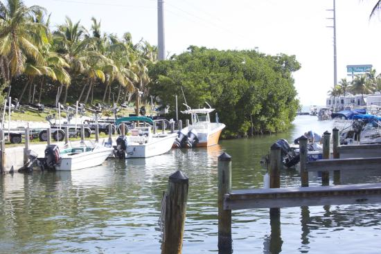 Boat access puts the beauty of the keys at your fingertips for Big pine fishing lodge