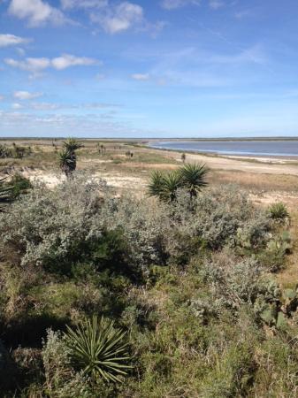 Laguna Atascosa National Wildlife Refuge: along the bay