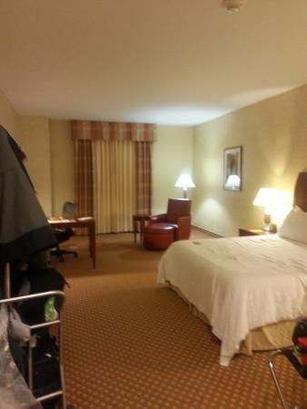 Hilton Garden Inn Ottawa Airport : Room Pic