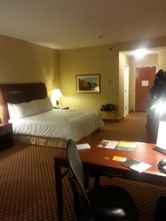 Hilton Garden Inn Ottawa Airport : Another Room Pic