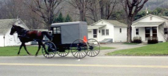 Aaronsburg, Пенсильвания: Amish Buggy Passing By