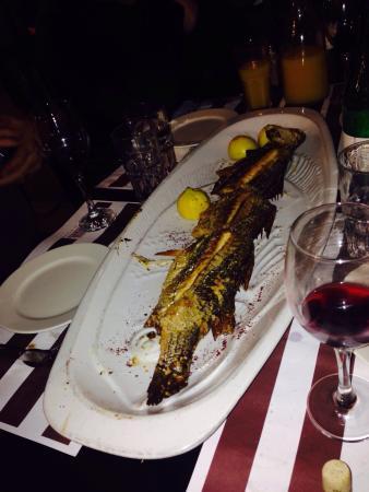 Benny Hadayag : Great fish