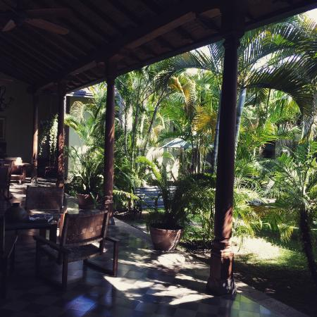 Backpackers Inn: Green Oasis