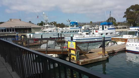 Dana Point, CA: The wharf