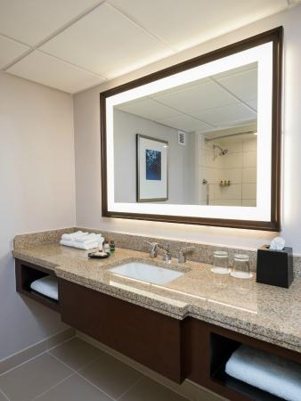Sheraton Memphis Downtown Hotel: Guest Bathroom