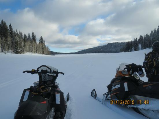 Beaver Creek Lodge: One of the many meadows right off trail