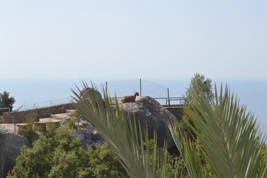 El Encinar Valldemossa Hotel: Vista habitación 2