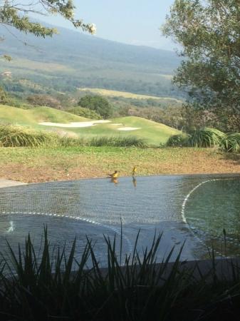 La Reunion Golf Resort & Residences: Vista desde la habitación