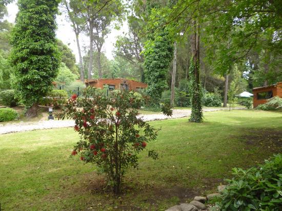 La Gran Cabana: jardin