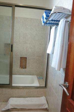 Paamul Hotel: Bathroom with step added