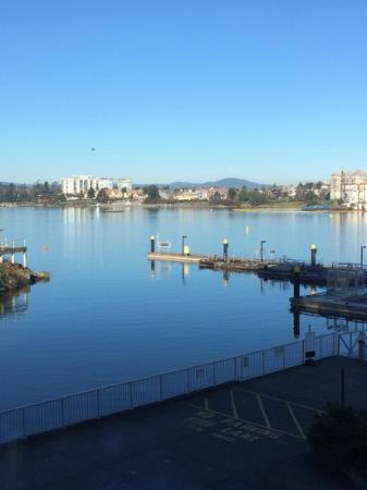Blue Crab Seafood House: The view of the Inner Harbour from my table at the restaurant