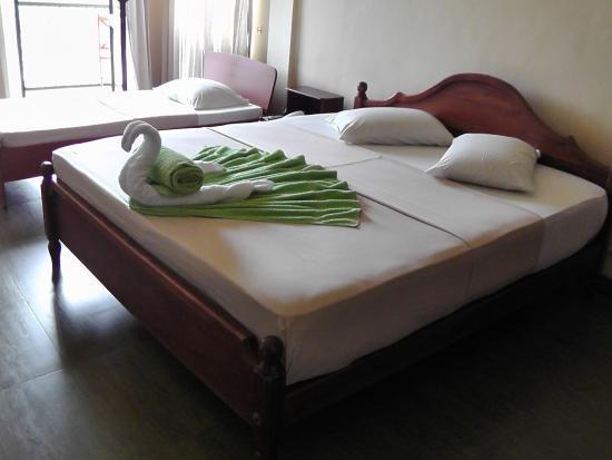Hotel Elephant Bay: our triple room