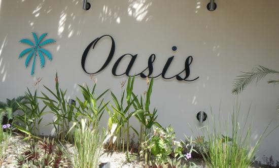 Hotel Oasis: The Oasis