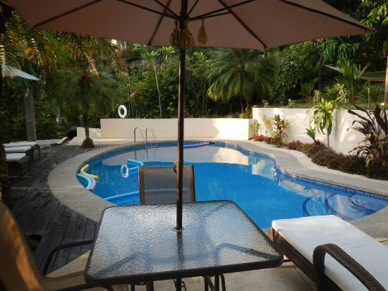 Hotel Oasis: The beautiful pool...great place to relax anytime of the day.
