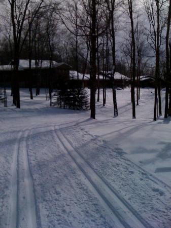Callaway, MN: 2011 - view of trail and buildings, coming in from a ski