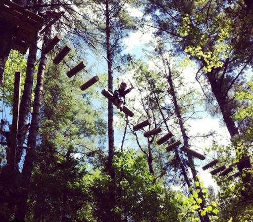 Arbraska Rawdon: High up in the trees:)