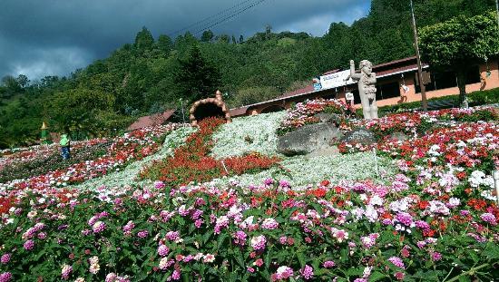 Hostal Boquete: A unos pasos de la feria de las flores