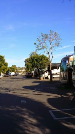 Mission Bay RV Resort: One on the lanes for RVs