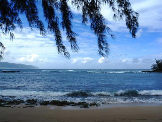 Blue Rush Surf School: Puanea Point