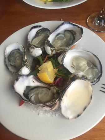 Hotel Bruny Bistro: Natural oysters