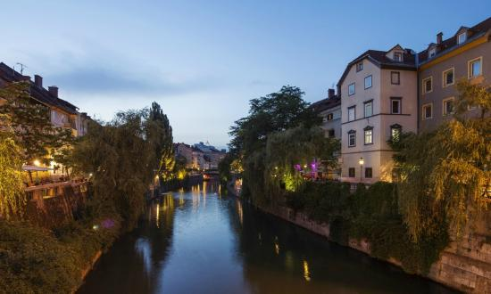 AdHoc Hostel: We are located right by the river