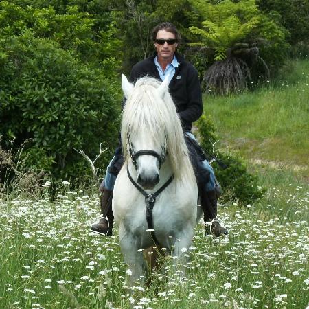Остров Уаихеке, Новая Зеландия: Waiheke Horse Tours