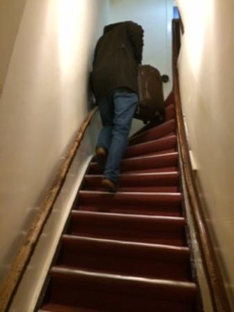 Bicycle Hotel: stairway