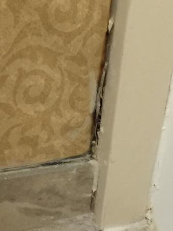 More Black Mold Picture Of Lancaster Host Resort And Conference Center Lancaster Tripadvisor