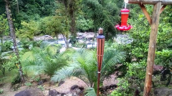 Hot Springs Lodge Costa Rica: from the Rio de Sueno room