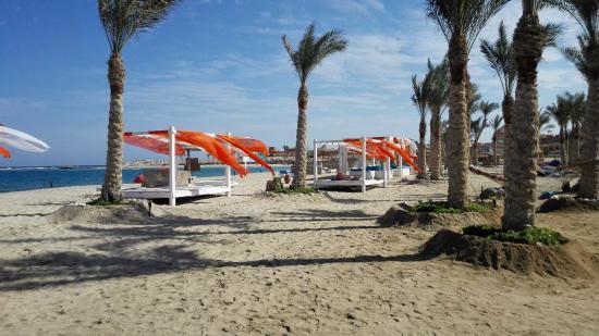 Abu Dabbab Lodge: Strand