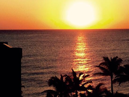 Greek Islands Taverna: A Lauderdale experience!!!