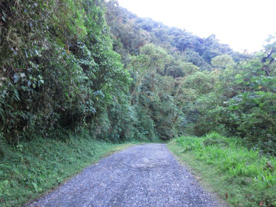 Cartago, Costa Rica: Mirador Trail