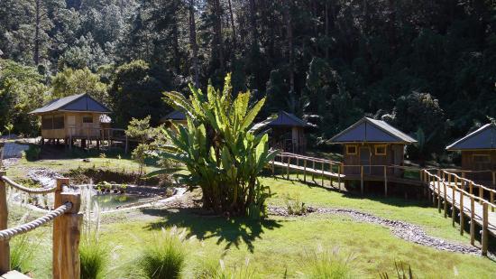 El Tular Santuario Natural