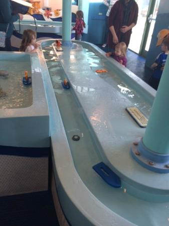 Water Table/Room - Picture of Kohl Children's Museum, Glenview ... on camp randall stadium map, target map, nordstrom map, dollar general map, lands end map, menards map, old navy map, petsmart map, gamestop map, petco map, guitar center map, puma map, dillard's map,
