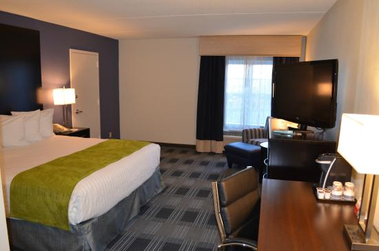 BEST WESTERN Hartford Hotel & Suites: Standard Room