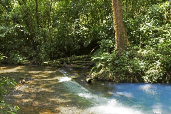 Alajuela, Kosta Rika: 2 clear rivers join and become blue