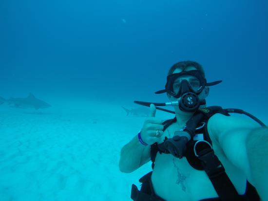 Scorpio Divers Tours: shark selfie