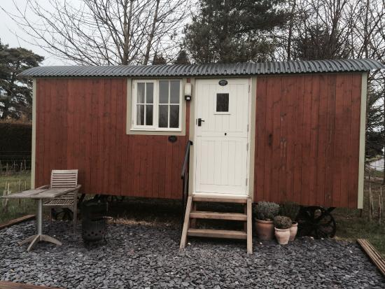 Dawn Chorus Holidays - The Pines: Our hut